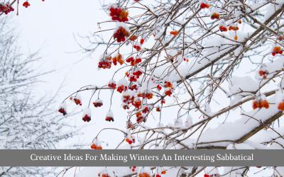 Creative Ideas For Making Winters An Interesting Sabbatical