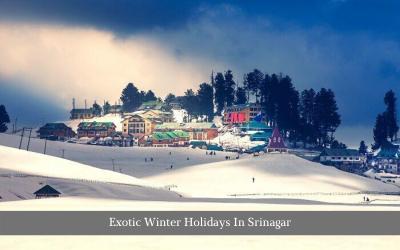 Exotic Winter Holidays In Srinagar