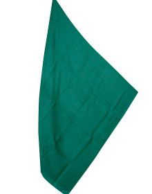 Semi Pashmina shawl Full plain Green color